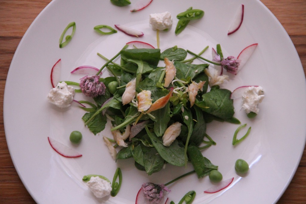 smoked trout and arugula salad