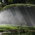 Sprinkler in sunlight