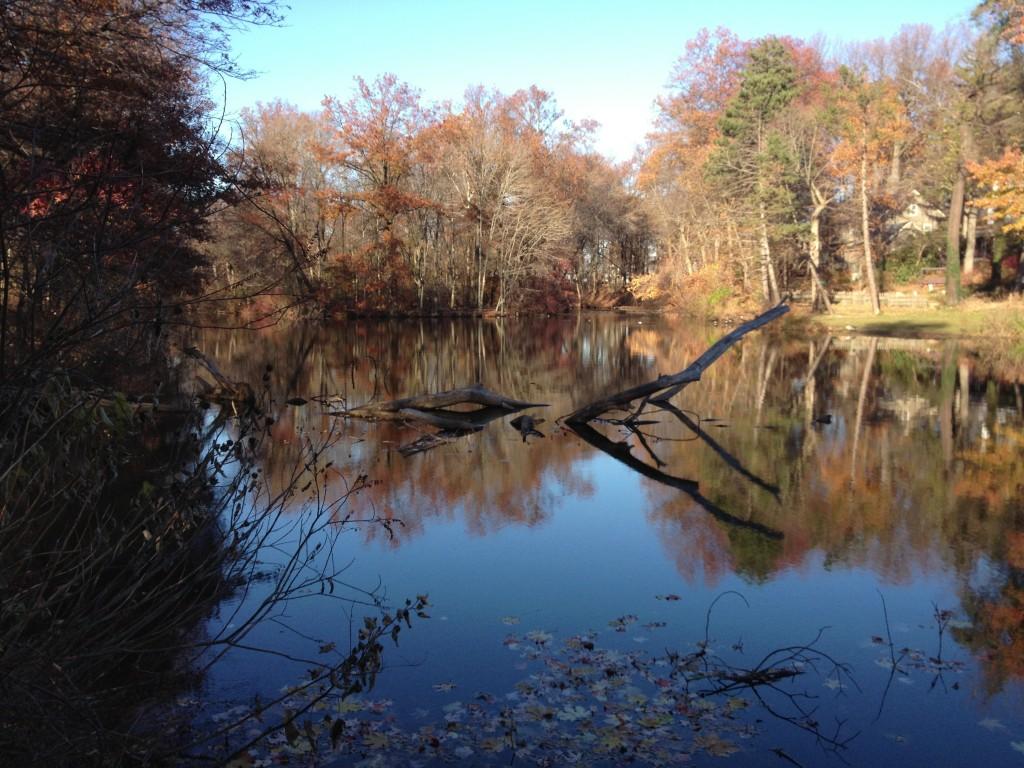 Milton Lake, NJ