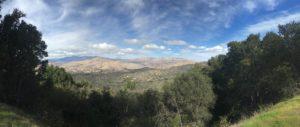 Road trip panorama 1